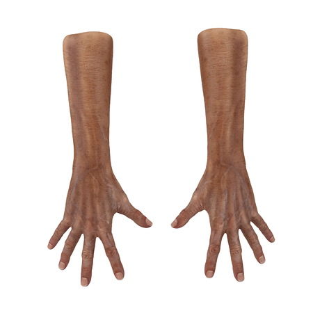 Old man hands on a white background. 3D illustration