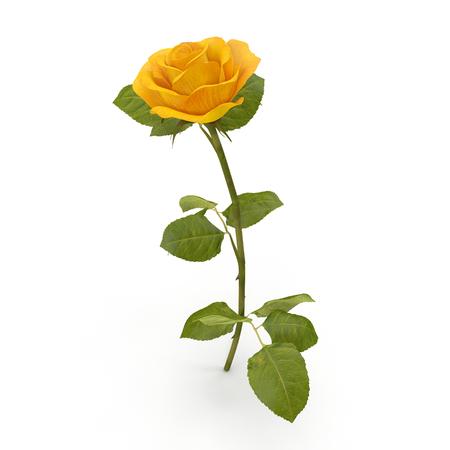 単一の美しい黄色のバラは白に分離しました。3D イラストレーション