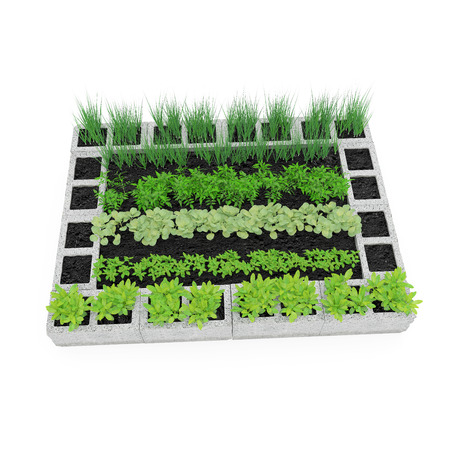 Cinder Block Garden on a white. 3D illustration