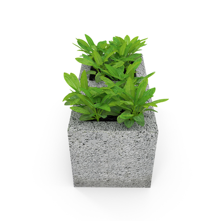 Cinder block urban garden on a white. 3D illustration Stock Photo