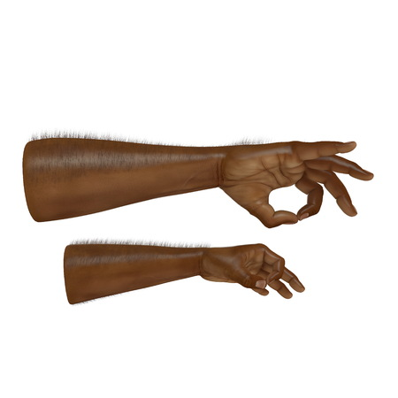 african man hand Ok Sign on a white. 3D illustration Stock Photo