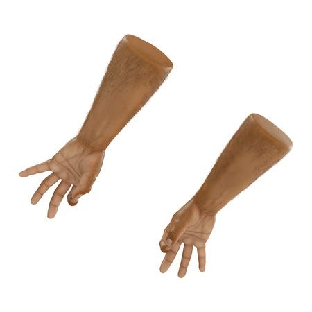 Man Hands ok sign Swarthy Skin on white. 3D illustration