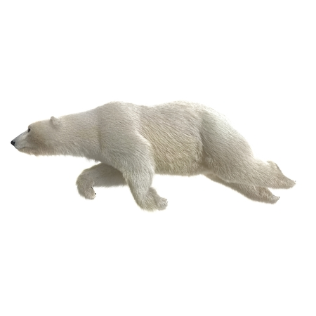 Large male Polar bear swimming on a white. 3D illustration Banque d'images