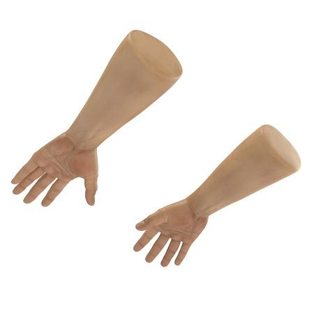man hands on white. 3D illustration