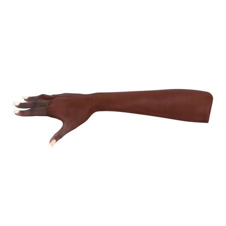 Afrikaanse Amerikaanse Vrouwelijke Hand op wit. 3D illustratie Stockfoto
