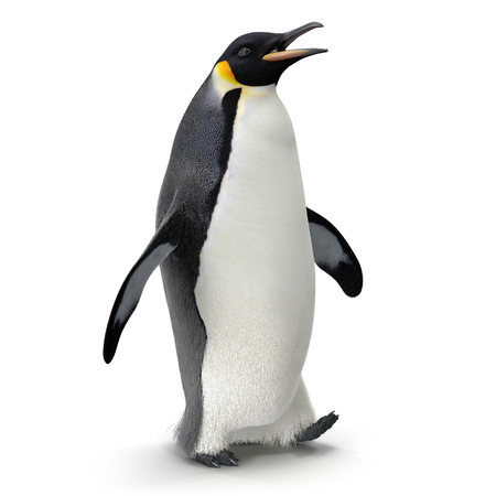 Emperor penguin. isolated on white. 3D illustration Imagens