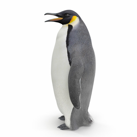 Emperor penguin. isolated on white background. Side view. 3D illustration