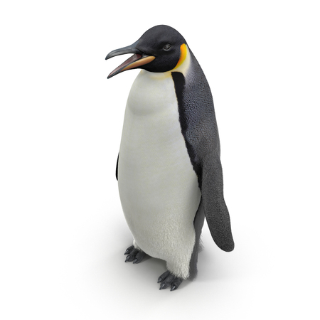 Emperor penguin. isolated on white background. 3D illustration
