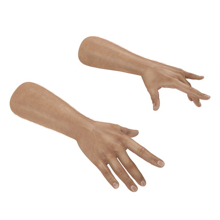 Male Hand on white. 3D illustration