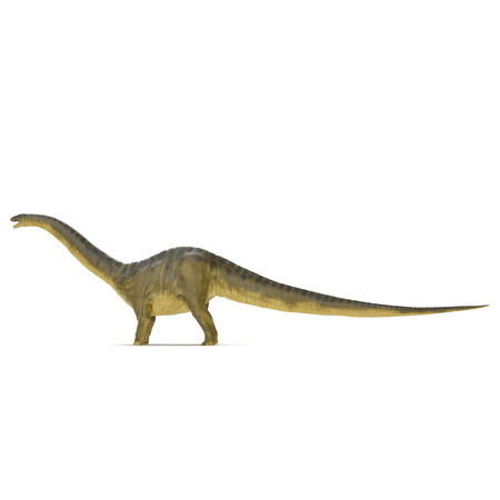 Apatosaurus Dinosaur on white. Side view. 3D illustration
