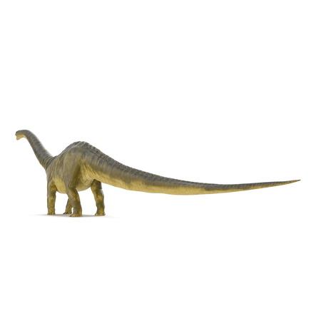 Apatosaurus Dinosaur on white. 3D illustration Stock Illustration - 103682029