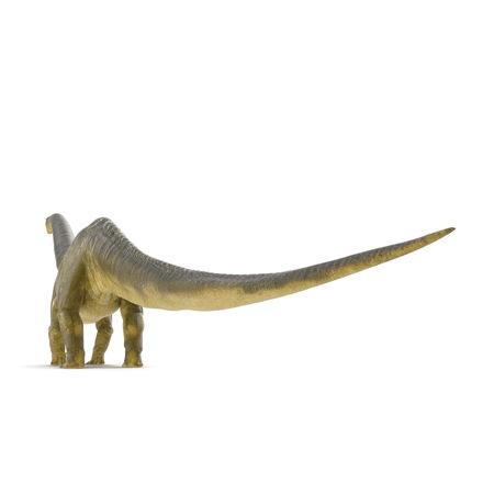 Apatosaurus Dinosaur on white. 3D illustration Stock Illustration - 103682033