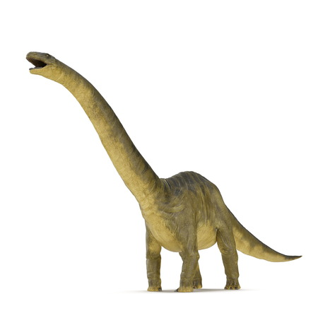 Apatosaurus Dinosaur on white. 3D illustration Stock Photo