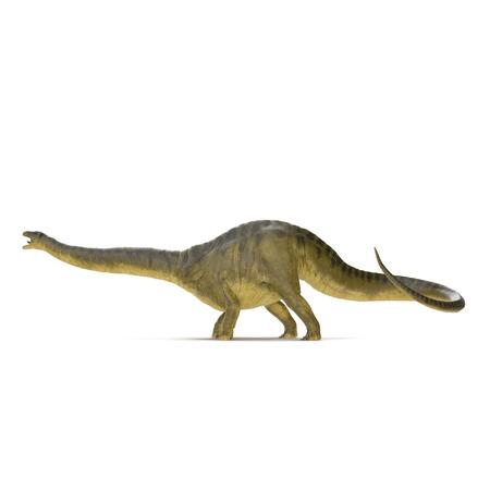 Apatosaurus Dinosaur on white. Side view. 3D illustration Stock Illustration - 103682041