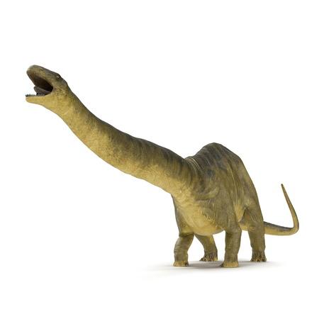 Apatosaurus Dinosaur on white. 3D illustration Stock Illustration - 103682127