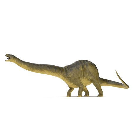 Apatosaurus Dinosaur on white. 3D illustration Stock Illustration - 103682121
