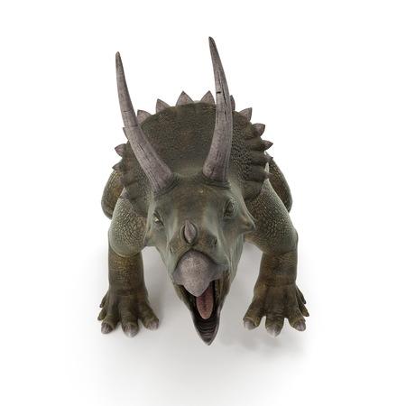 Triceratops dinosaur on white. 3D illustration Stock Photo