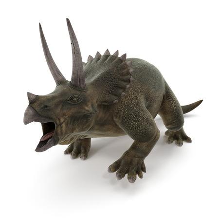 Triceratops dinosaur on white. 3D illustration Imagens