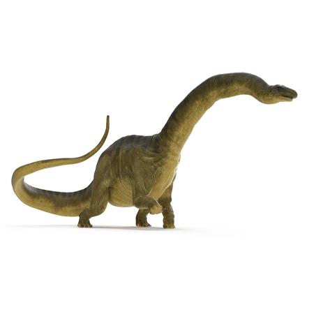 Apatosaurus Dinosaur on white. 3D illustration Stock Illustration - 105488081