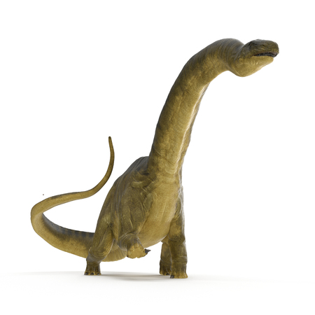 Apatosaurus Dinosaur on white. 3D illustration Stock Photo