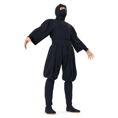 Ninja Standing Pose On White Background. 3D Illustration