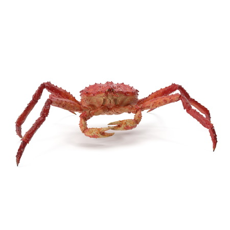 Red King Crab Kamchatka On White Background. 3D Illustration, isolated Stockfoto