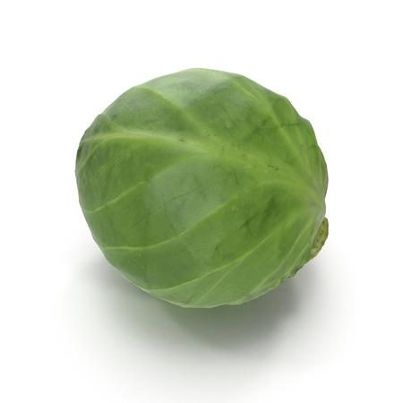 Cabbage 3d Illustration on White Background