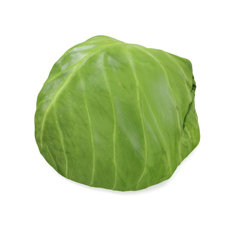 Cabbage Half 3d Illustration on White Background