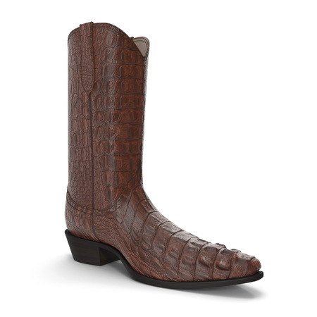 Crocodile Cowboy Boots 3D Illustration On White Background