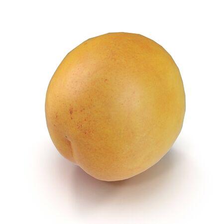 Apricots Isolated on White Background 3D Illusration Zdjęcie Seryjne - 128055318
