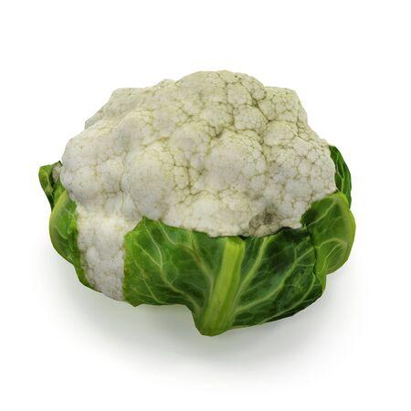 Cauliflower Isolated on White Background 3D Illustration