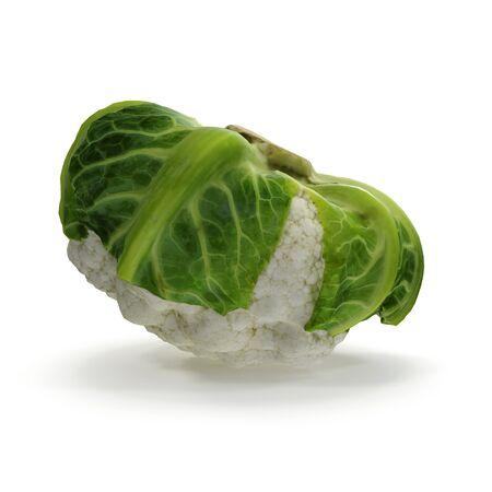 Cauliflower on White Background 3D Illustration Isolated Zdjęcie Seryjne