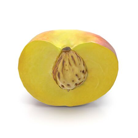 Half of Peach With Seed on White Background 3D Illustration Isolated Zdjęcie Seryjne
