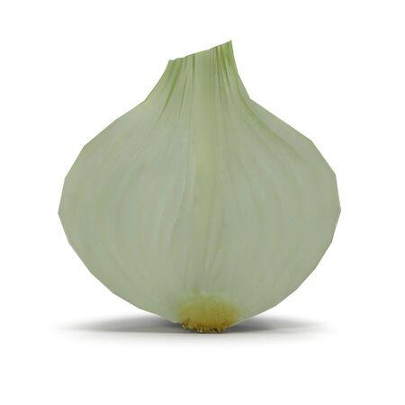 Half Onion on White Background 3D Illustration Isolated