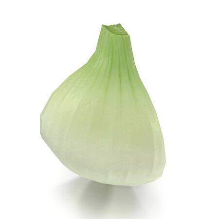 Onion Quarter on White Background 3D Illustration Isolated Imagens
