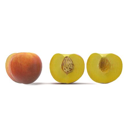 Peach Fruit Collection on White Background 3D Illustration Isolated Zdjęcie Seryjne