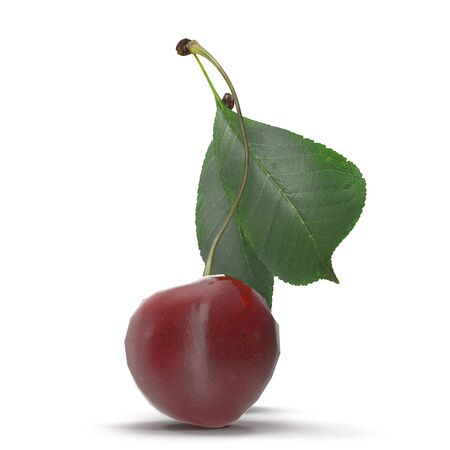 Sour Cherry With Leaf on White Background 3D Illustration Isolated Zdjęcie Seryjne