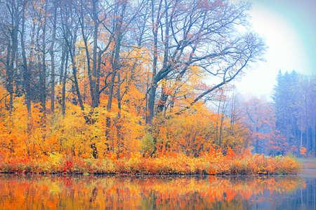 autumn lake park photo
