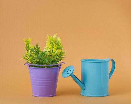 Toy blue watering can, purple bucket with yellow-green sprigs on an orange background.