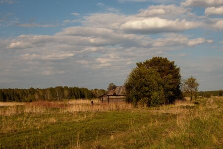 The last old rustic wooden house with a garden, standing in the field. Siberia. Stock Photo - 127910469