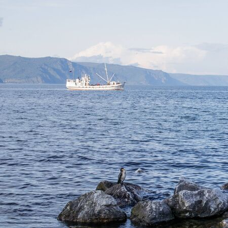 View of Lake Baikal near city of Slyudyanka, Irkutsk region, Russia. In foreground is cormorant on dark stones. In background is white fishing boat.