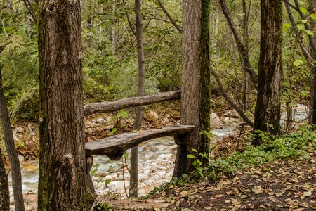 Forest bench by the mountain river for tourists to relax. Autumn landscape. Фото со стока