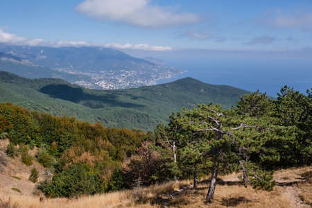 Impressive landscape. Crimean mountains and cloudy sky. View from the Ai Petri plateau. In the foreground are beautiful coniferous trees. Mountain pine. 版權商用圖片