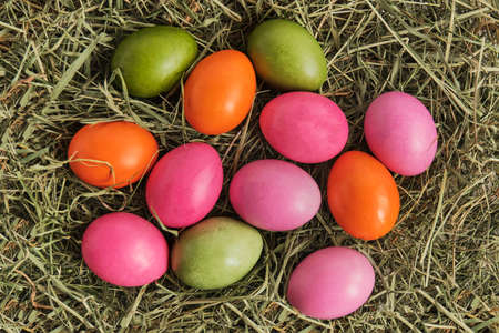 Colored chicken eggs painted with natural food dyes on dry grass. Banque d'images