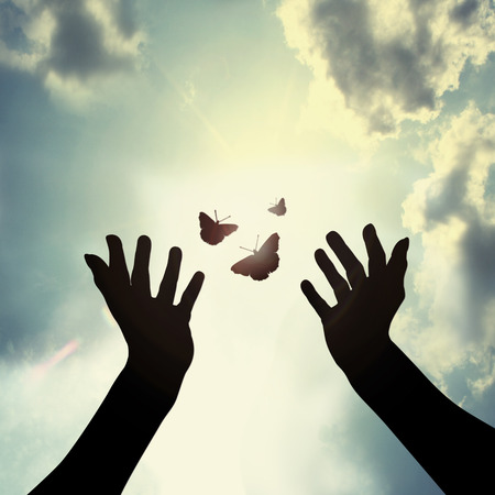 butterfly in hand: giving a new hope