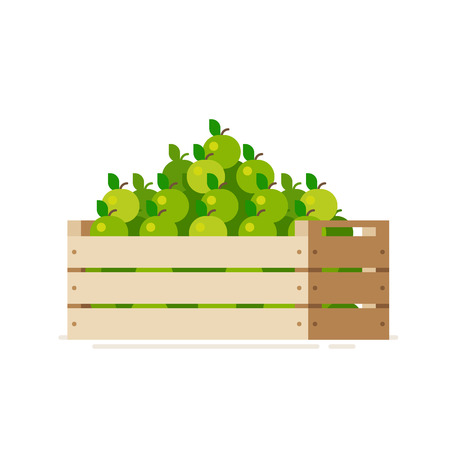 Boîte en bois de caisse pleine de pommes fraîches isolés sur un fond blanc. Vector illustration. Appartement style design