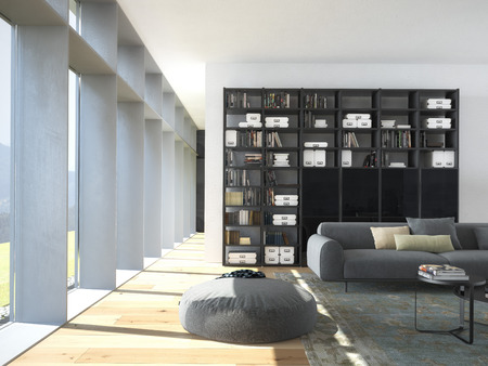 Bookcase: 3d rendering.modern couch and wood bookcase in a living room