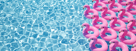 3D rendering. a lot of flamingo floats in a pool Imagens - 101750842