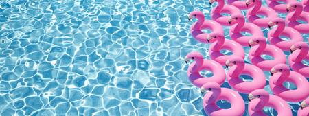 Representación 3D. muchos flamencos flotan en una piscina