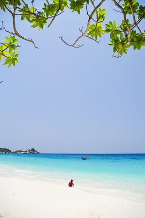 pristine corals: White beach with beautiful blue sea at Similan Thailand